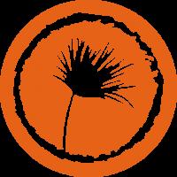 ISO naranja